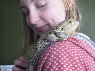 04-09-09 lizard 082